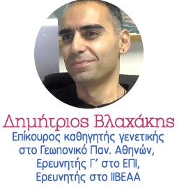 DIMITRIOS VLACHAKIS